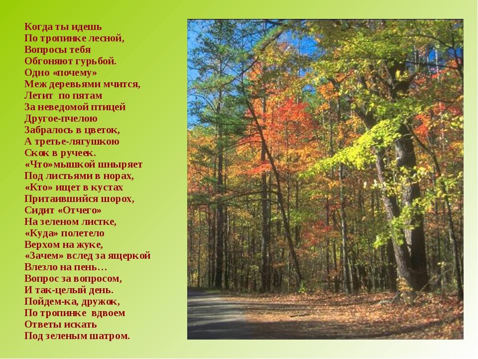 Когда ты идешь По тропинке лесной, Вопросы тебя Обгоняют гурьбой. Одно «поче...