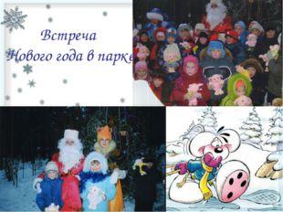 Встреча Нового года в парке