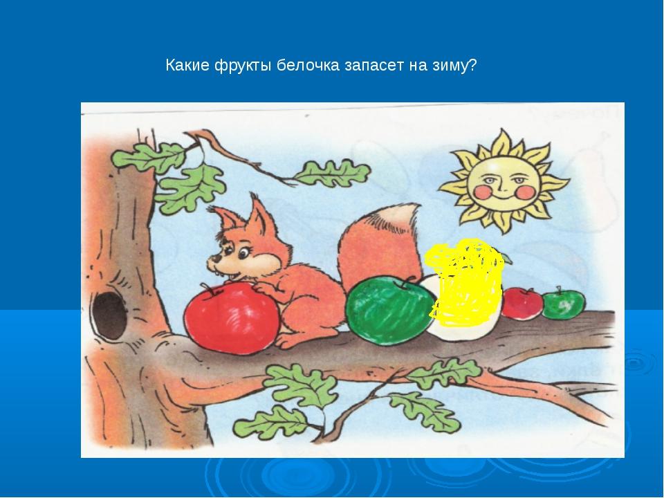 Какие фрукты белочка запасет на зиму?