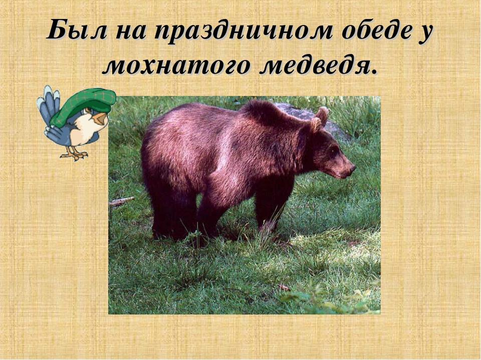Был на праздничном обеде у мохнатого медведя.