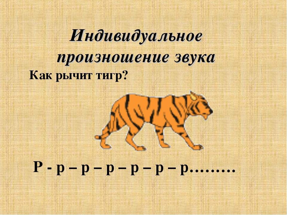 Индивидуальное произношение звука Р - р – р – р – р – р – р……… Как рычит тигр?