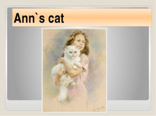 Ann`s cat