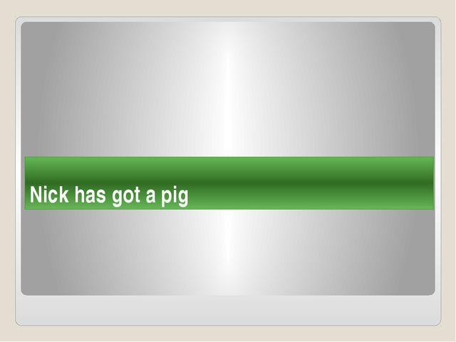 Nick has got a pig