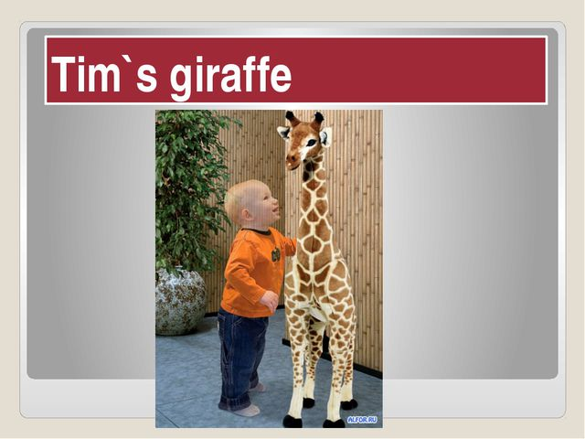 Tim`s giraffe