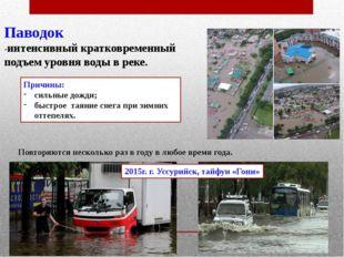 Паводок -интенсивный кратковременный подъем уровня воды в реке. Причины: силь