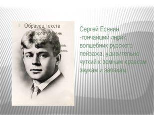 Сергей Есенин -тончайший лирик, волшебник русского пейзажа, удивительно чутки