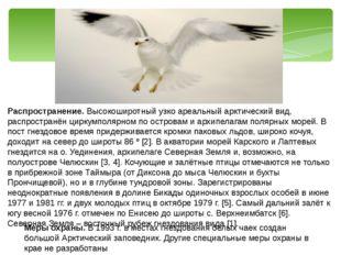 Распространение. Высокоширотный узко ареальный арктический вид, распространён