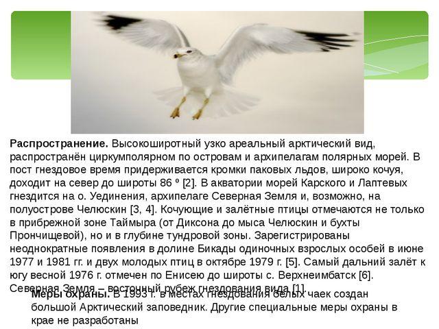 Распространение. Высокоширотный узко ареальный арктический вид, распространён...