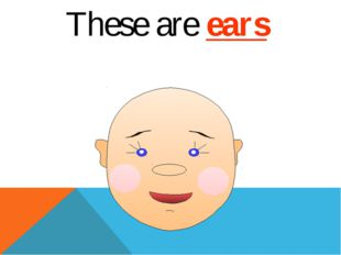 These are ears