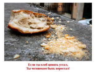 Если ты хлеб ценить устал, Ты человеком быть перестал!
