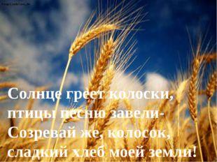 Солнце греет колоски, птицы песню завели- Созревай же, колосок, сладкий хлеб