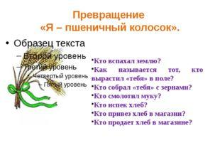Превращение «Я – пшеничный колосок». Кто вспахал землю? Как называется тот, к