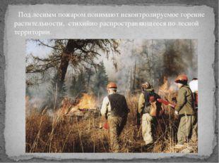 Под лесным пожаром понимают неконтролируемое горение растительности, стихийн