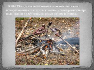 В 90-97% случаев виновником возникновения лесных пожаров оказывается человек