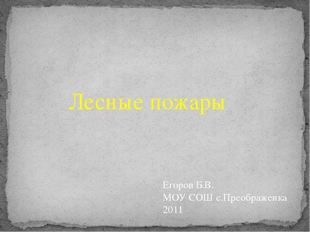 Лесные пожары Егоров Б.В. МОУ СОШ с.Преображенка 2011