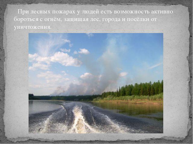 При лесных пожарах у людей есть возможность активно бороться с огнём, защища...