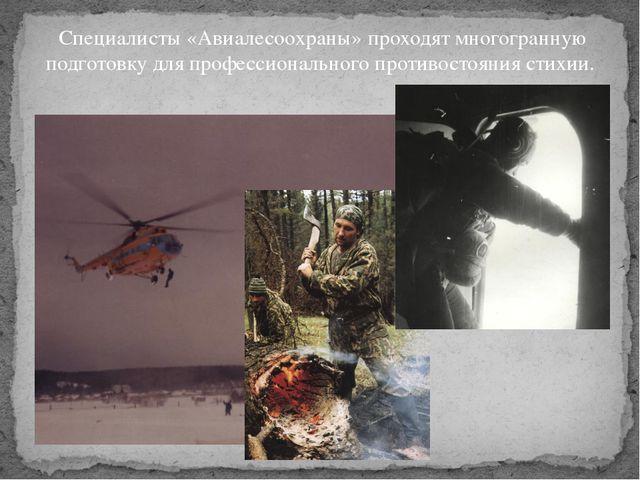 Специалисты «Авиалесоохраны» проходят многогранную подготовку для профессион...