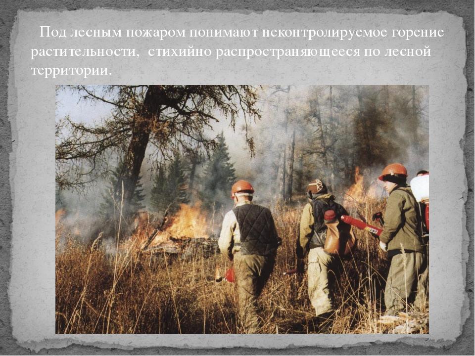 Под лесным пожаром понимают неконтролируемое горение растительности, стихийн...