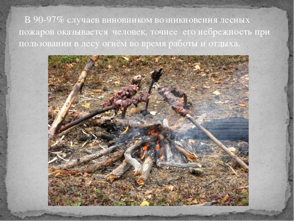В 90-97% случаев виновником возникновения лесных пожаров оказывается человек...