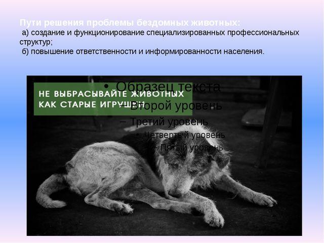 Пути решения проблемы бездомных животных: а) создание и функционирование спец...