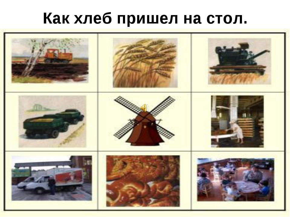 самые интересные картинки откуда хлеб на стол пришел радует туристов развитой