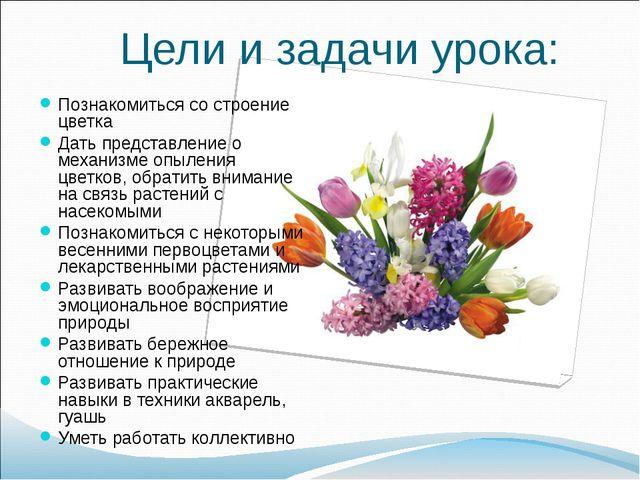 Цели и задачи урока: Познакомиться со строение цветка Дать представление о ме...