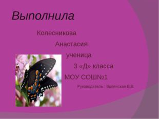 Выполнила Колесникова Анастасия ученица 3 «Д» класса МОУ СОШ№1 Руководитель