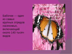 Бабочки — один из самых крупных отрядов насекомых, включающий около 140 тысяч