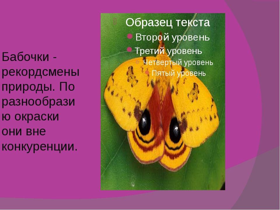 Бабочки - рекордсмены природы. По разнообразию окраски они вне конкуренции.