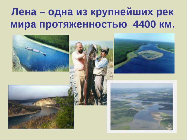 Лена – одна из крупнейших рек мира протяженностью 4400 км.