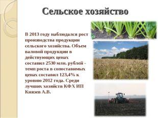 В 2013 году наблюдался рост производства продукции сельского хозяйства. Объем