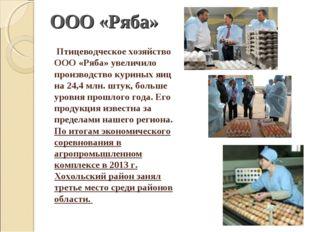 Птицеводческое хозяйство ООО «Ряба» увеличило производство куриных яиц на 24