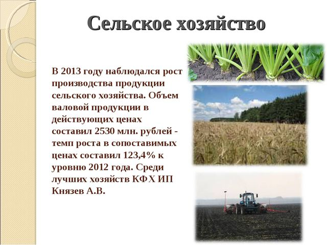 В 2013 году наблюдался рост производства продукции сельского хозяйства. Объем...