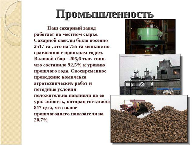 Наш сахарный завод работает на местном сырье. Сахарной свеклы было посеяно 2...