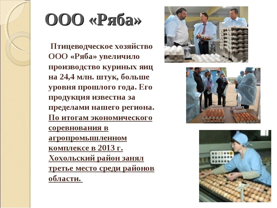 Птицеводческое хозяйство ООО «Ряба» увеличило производство куриных яиц на 24...
