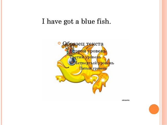I have got a blue fish.