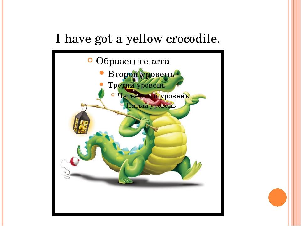 I have got a yellow crocodile.