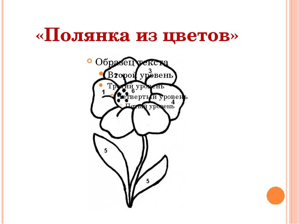 «Полянка из цветов»
