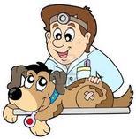 Debes llevar a tu mascota al menos una vez al año al veterinario para ...