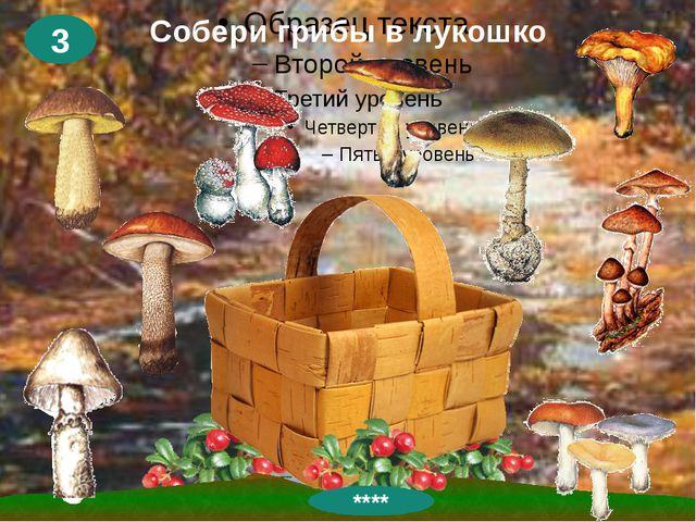 Собери грибы в лукошко 3 ****
