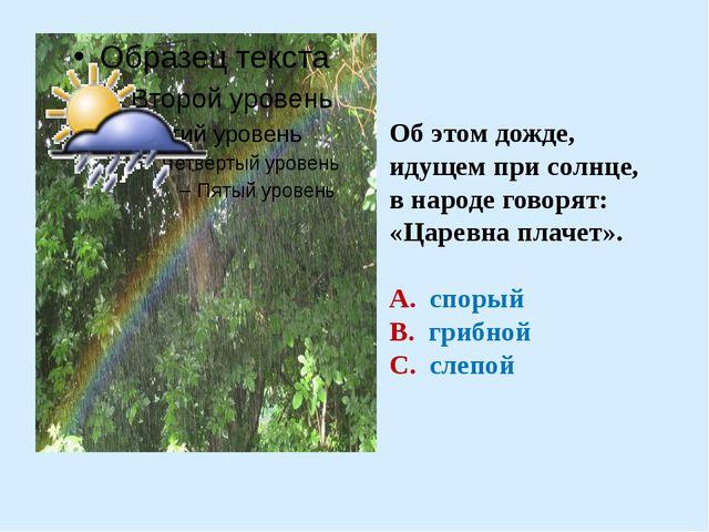 Об этом дожде, идущем при солнце, в народе говорят: «Царевна плачет». А. спо...