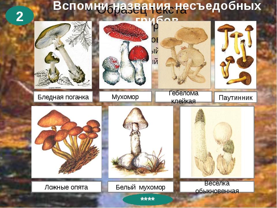 Спасибо за урок! Презентацию составила: Куриленко Людмила Николаевна – учител...