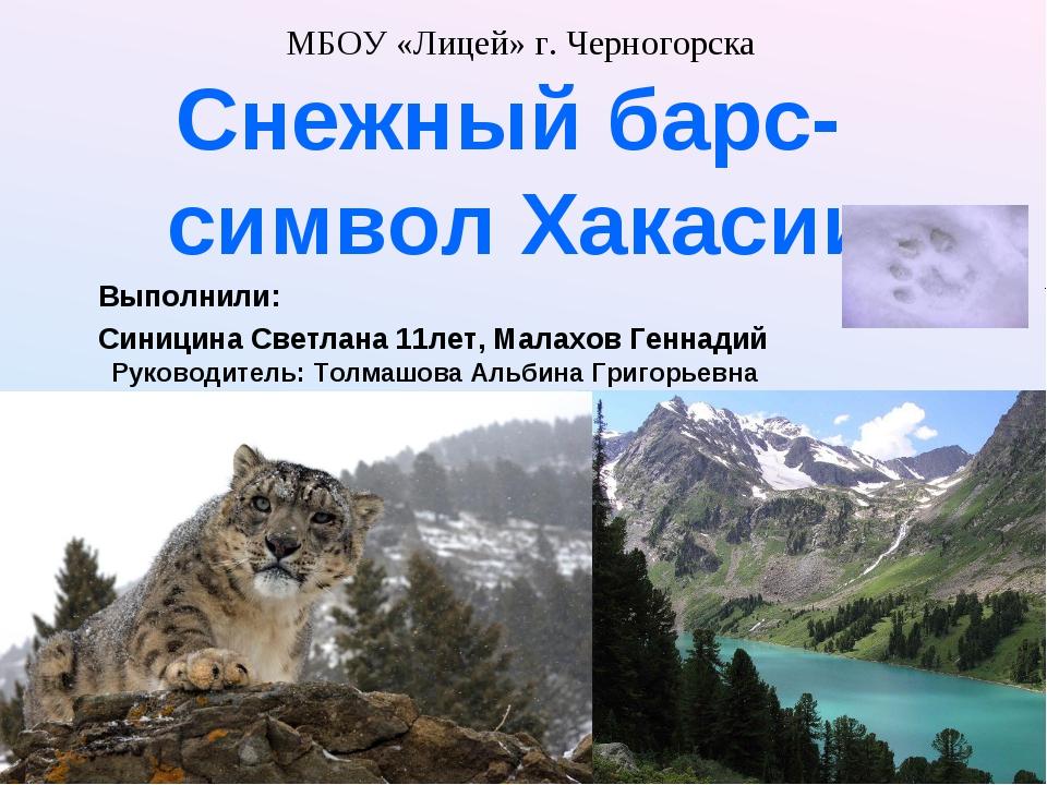 МБОУ «Лицей» г. Черногорска Снежный барс- символ Хакасии Выполнили: Синицин...