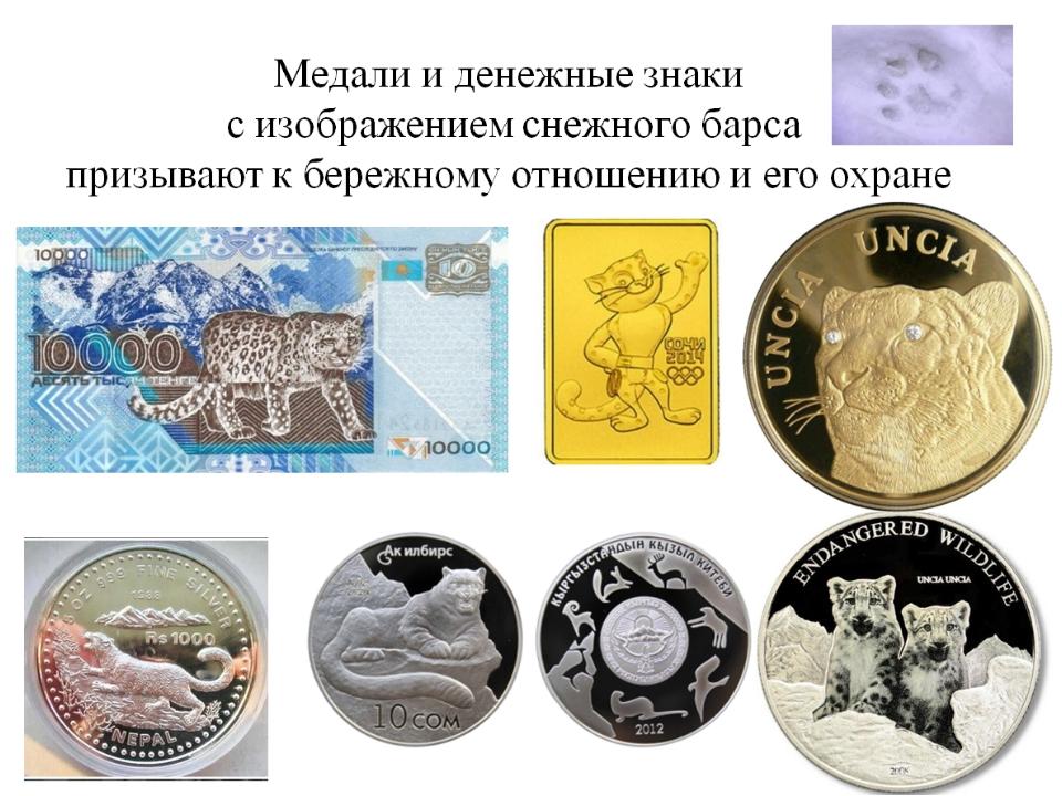 Изображение Снежного барса носят гербы некоторых городов и республик: Татарст...