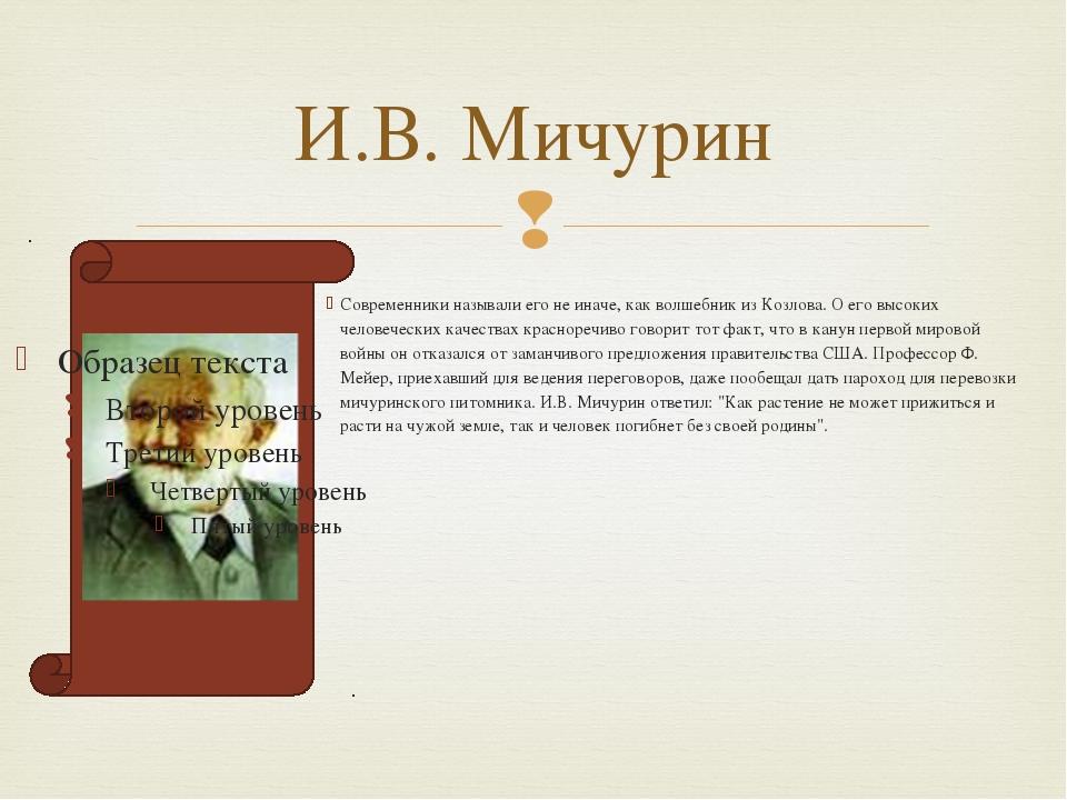 И.В. Мичурин Современники называли его не иначе, как волшебник из Козлова. О...