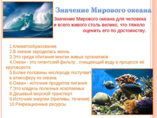 Значение Мирового океана для человека и всего живого столь велико, что тяжел