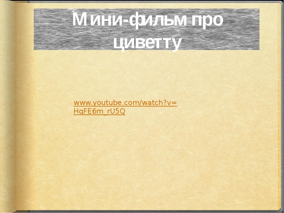 Мини-фильм про циветту www.youtube.com/watch?v=HqFE6m_rU5Q