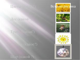Цветы (какие?) Лес (какой?) Трава (какая?) Солнце (какое?) Шар (какой ?)