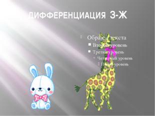 ДИФФЕРЕНЦИАЦИЯ З-Ж
