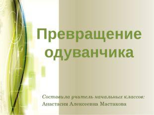 Превращение одуванчика Составила учитель начальных классов: Анастасия Алексее